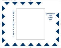 Delivery Envelopes